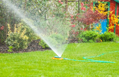 Best Irrigation Systems for a Home Garden