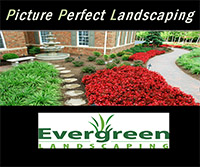 Free Landscaping Guide