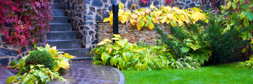 We Bring Your